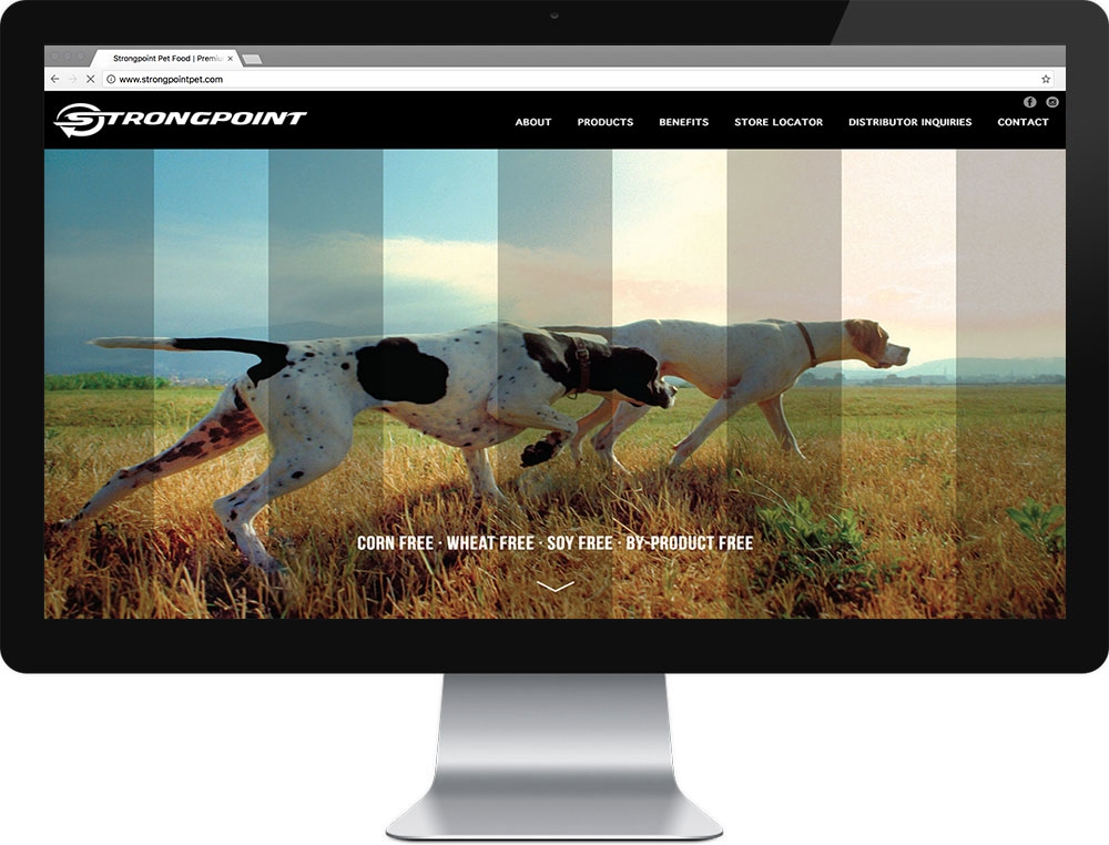 Website for Strongpoint Pet